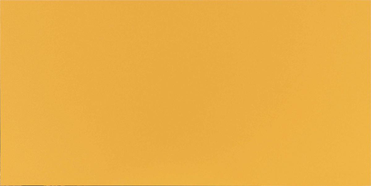 مونو کالر پرتقالی MONOCOLOR ORANGE MATTE