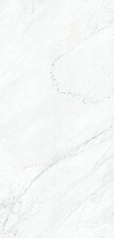 Palessandro 23G