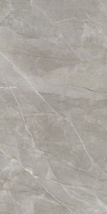 Elegant Grey Marble | FGM-A5195 | Natural